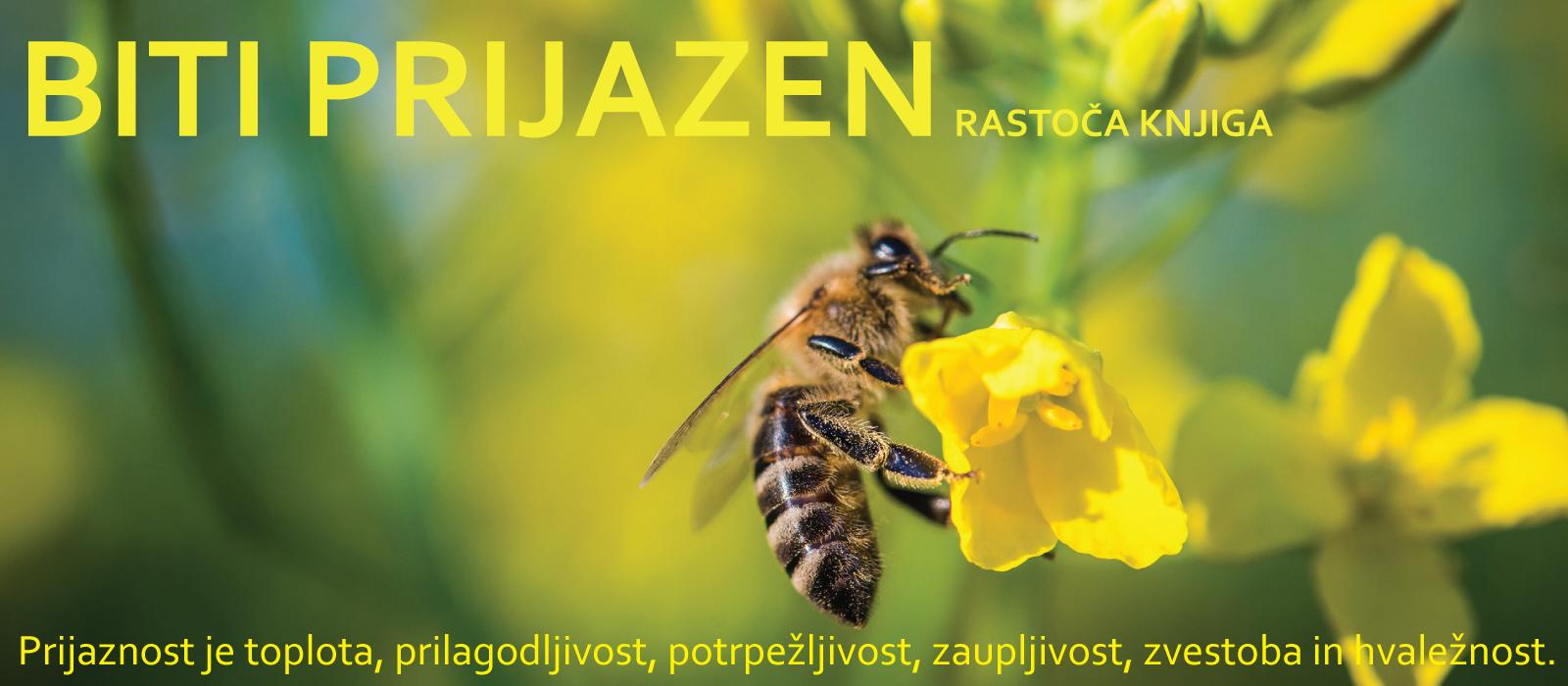 rastoča-knjiga-2019
