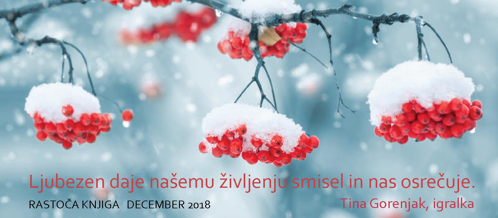 rastoča-knjiga-DECEMBER