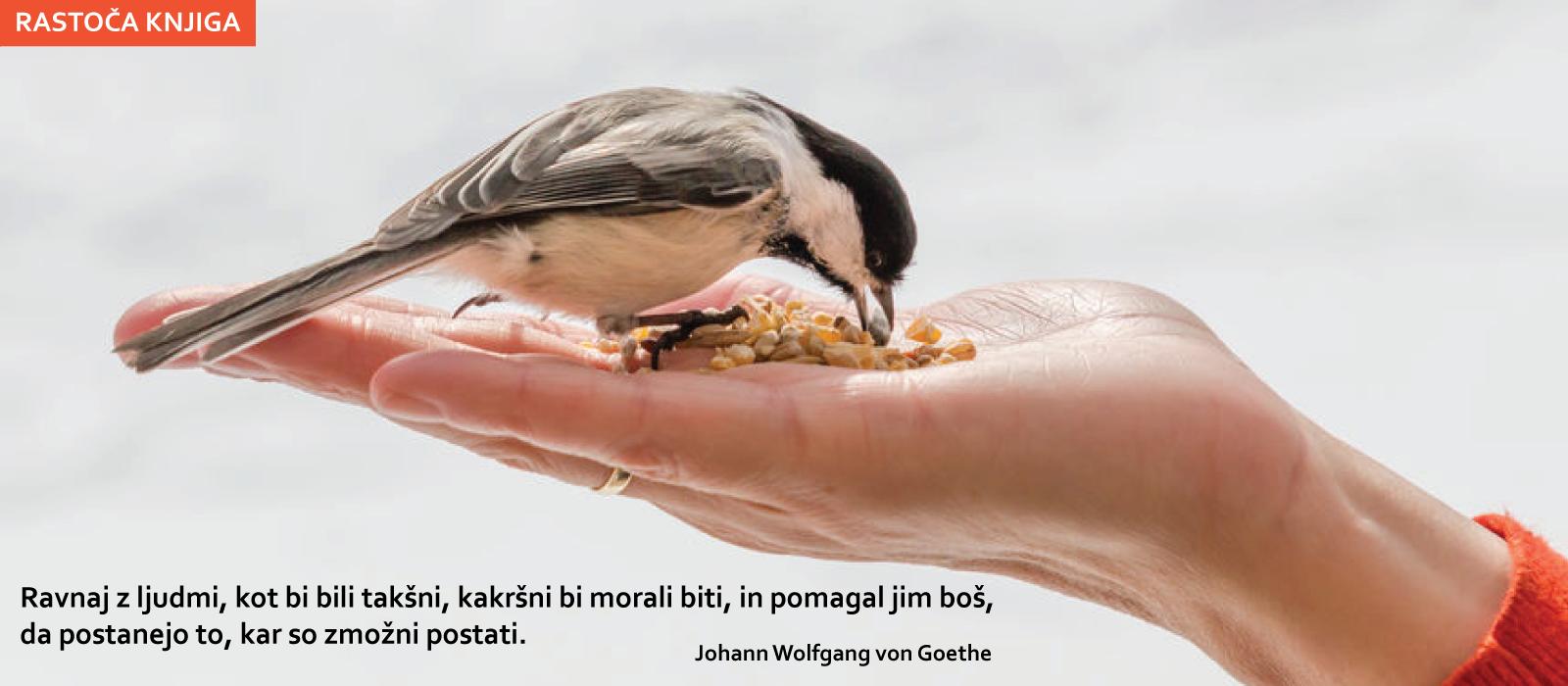 rastoča-knjiga-JANUAR