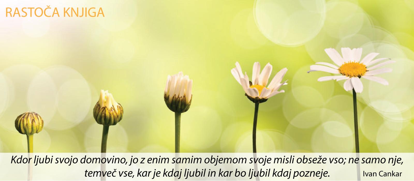 rastoča-knjiga-JUNIJ